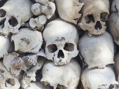 Не наешься: учёные выяснили причину каннибализма древних людей