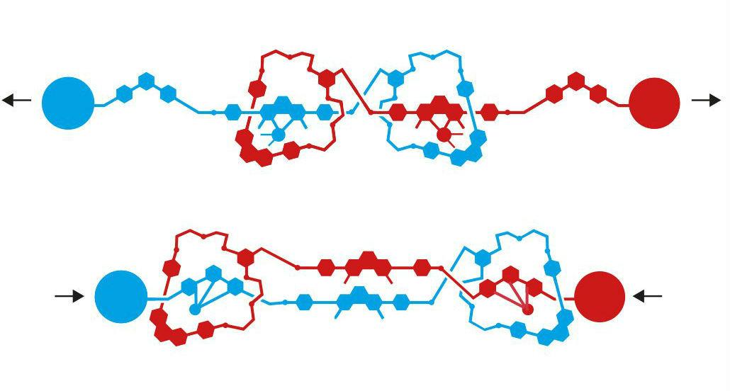 Картинки по запросу молекулярная наномашина