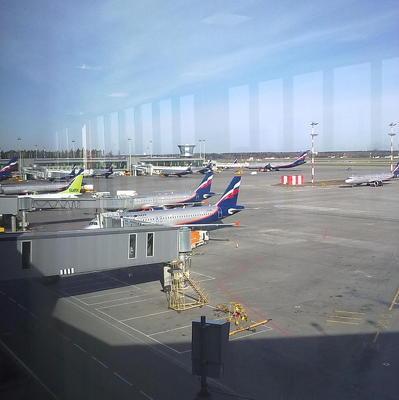 В аэропорту Внуково задержан пассажир, устроивший дебош на борту самолета