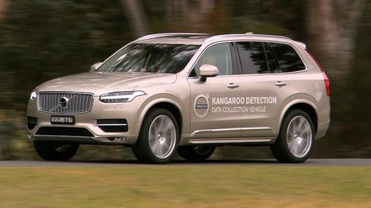 Volvo подружит свои автомобили с кенгуру