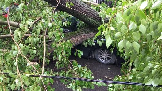 Ураган уничтожил в Москве сотни автомобилей. Фото