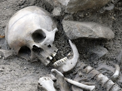 На лесопилке нашли останки XIX века
