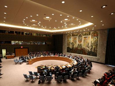 Совбез ООН продлил на год срок миротворческой миссии в Мали