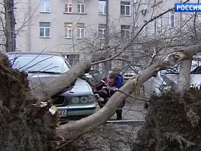 22 метра в секунду: сильнейшие за 100 лет ураганы в Москве