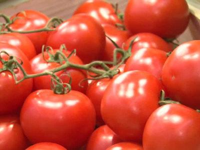 Турецкие томаты вернутся в Россию до конца года