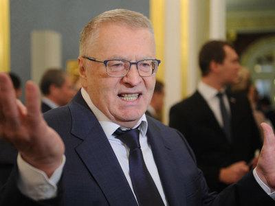 Жириновский: шесть лет правительство не дает разобраться с кошками и собаками