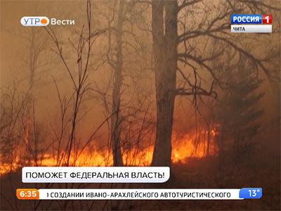 Управлять лесами Забайкалья и Бурятии будут на федеральном уровне