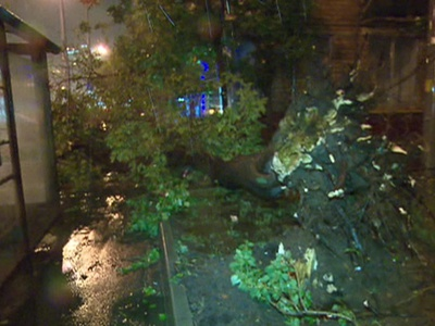 Москва пережила мощнейший шторм: от стихии пострадали семь человек
