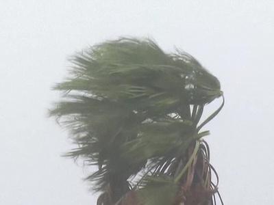 "Тайфун ""Дамри"" во Вьетнаме: погибших уже почти полсотни"