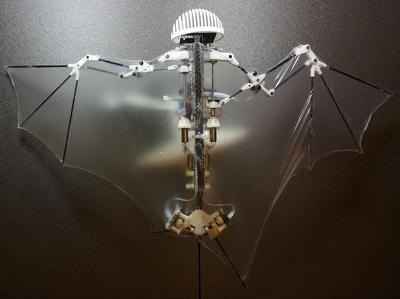 """Гаджеты за неделю: от селфи-дрона до """"рукокрылого"""" робота"""