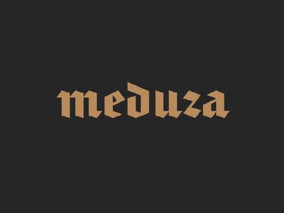 """""""Медуза"""" извинилась перед РИА Новости за ложное обвинение в искажении данных"""