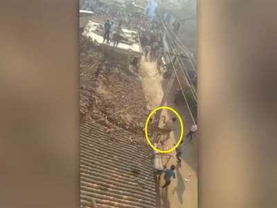В Индии мужчина прыгнул с крыши, спасаясь от леопарда. Видео