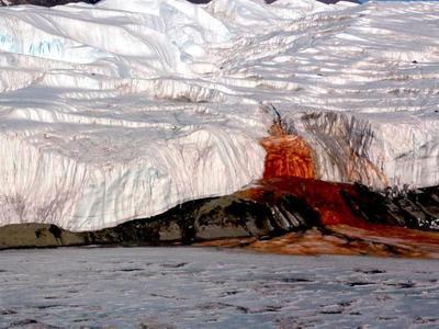 """Раскрыт секрет """"кровавого водопада"""" в Антарктиде"""
