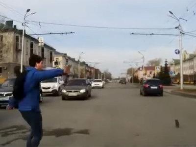 Молодой человек спас котенка из-под колес автомобилей. Видео