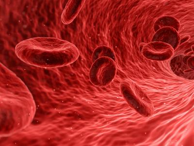 """Для восстановления работы кровеносной системы создан первый """"молекулярный протез"""""""