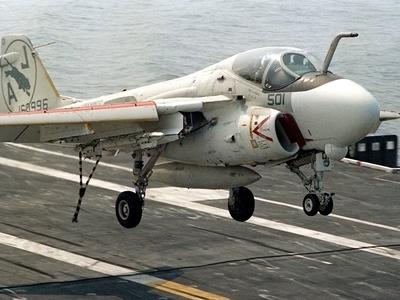 Стало известно, как летчику удалось выжить внутри двигателя самолета