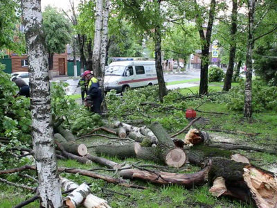 В Москве вновь объявлен желтый уровень погодной опасности