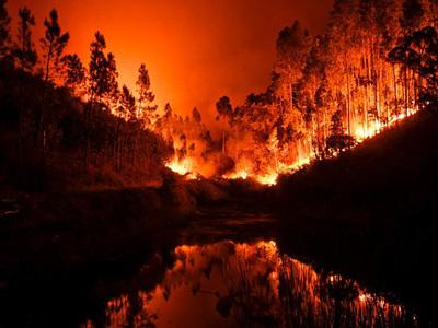 Число жертв пожара в Португалии возросло до 62