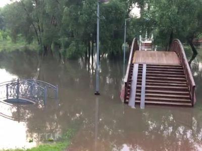 Последствия московского урагана устранят к понедельнику