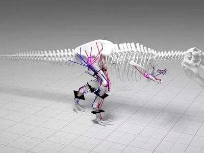 Не так быстро: палеонтологи развенчали голливудские мифы о бегающих тирексах