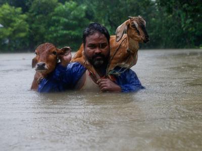 Пострадавших от наводнений в Непале спасают слоны