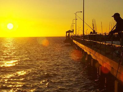 Во Флориде на удочку рыбака клюнула пьяная девушка