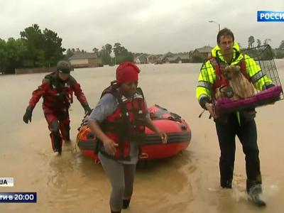 Наводнение в Техасе: ужас происходящего затмили туфли Мелании Трамп