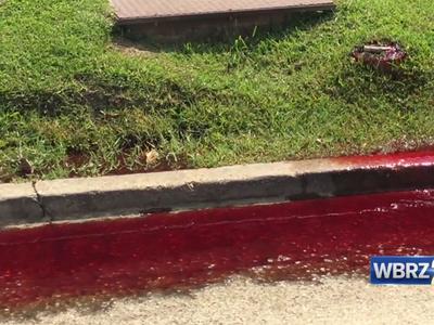 Кровь мертвецов залила американскую улицу