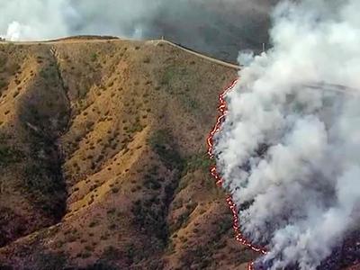 До 15 возросло число жертв пожаров в Калифорнии