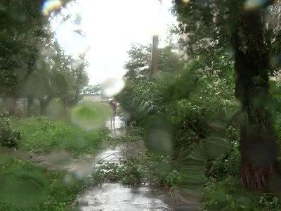 Пять человек пострадали от урагана в Поморье