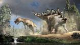 Стегозавр использовал свой шипованный хвост как грозное оружие. На одном из ископаемых образцов аллозавров (также на рисунке) были даже обнаружены следы повреждения от этих шипов