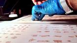 Работа с фрагментами свитков Мёртвого моря