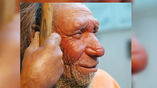 Денисовцы, судя по всему, в своё время обособились от неандертальцев.