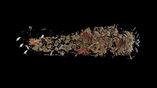 """Фрейзер надеется, что радиоуглеродный анализ покажет, когда умер человек, чьи останки удалось найти в """"пустом"""" саркофаге."""