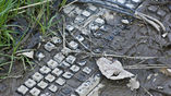"""""""Электронные отходы"""" отнюдь не безопасны для экологии, поэтому важно изначально делать электронику такой, чтобы её можно было легко утилизировать."""