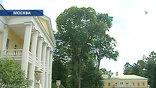 Ирония судьбы: статус резиденции вождя позволил сохранить усадьбу Горки в первозданном виде. С советской властью у Шехтеля отношения не сложились