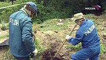 В Раменском районе Подмосковья в течение нескольких десятилетий действовал полигон радиоактивных отходов