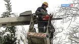 На этот раз людей заранее предупредили о том, что отключения будут вызваны плановыми работами. Узкие просеки и гнилые деревья, как выяснилось, стали главной причиной того, что под натиском ледяного дождя стволы падали на ближайшие линии ЛЭП.