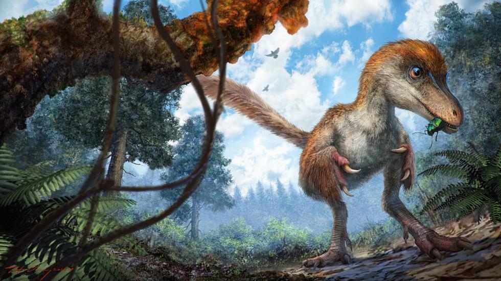В Мьянме ученые обнаружили хвост динозавра в куске янтаря