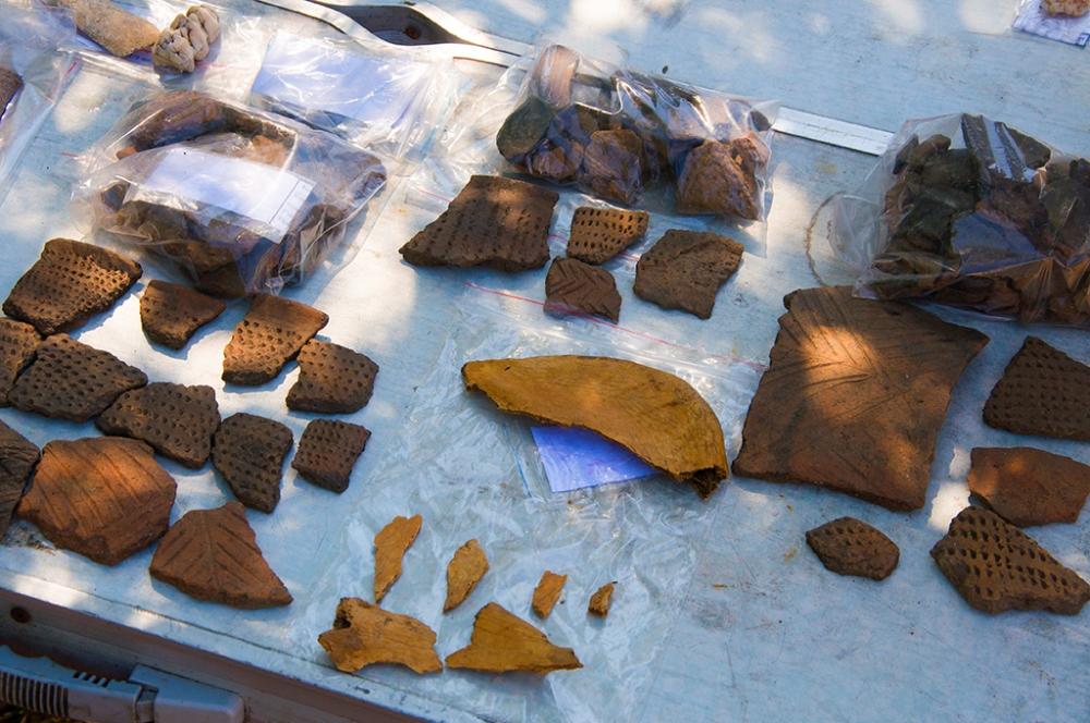 Исследователи выяснили, чем питались жители Приморcкого края вкаменном веке