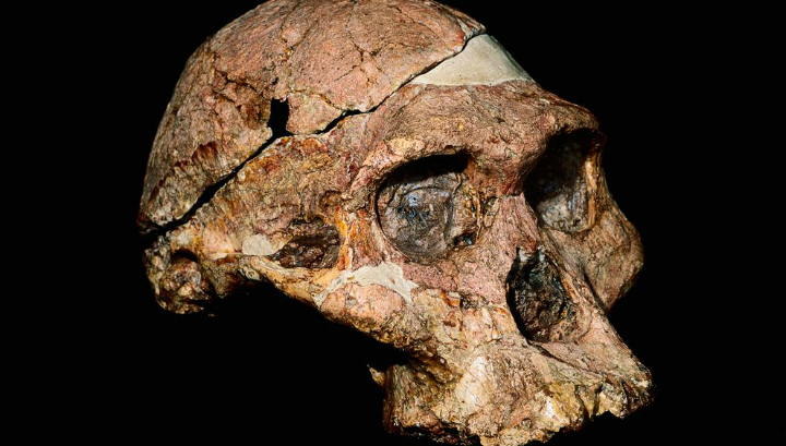 В подводной пещере в Мексике найдены останки древнего человека