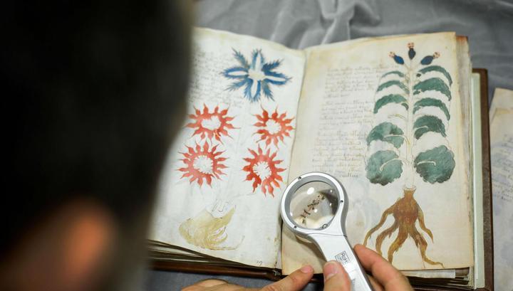 Ученые расшифровали начало манускрипта Войнича с помощью искусственного интеллекта