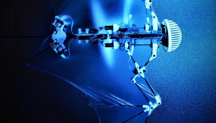 Ученые США разработали робота— летучую мышь