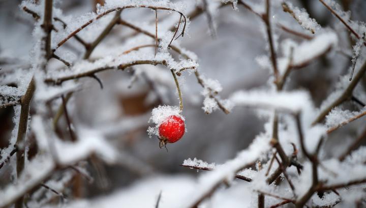 В Москве небольшой снег и морозно