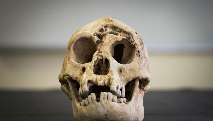 На своих двоих: опубликовано новое исследование о предках человека