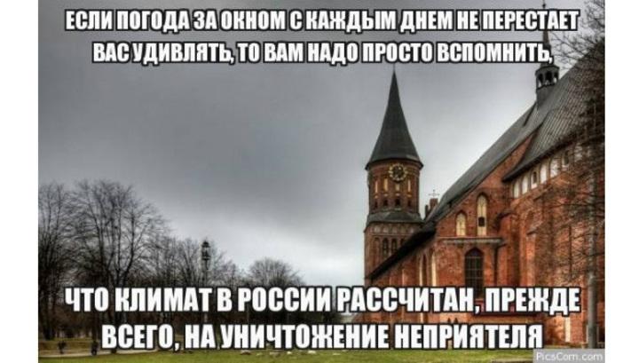 https://cdn-st2.rtr-vesti.ru/p/xw_1408704.jpg