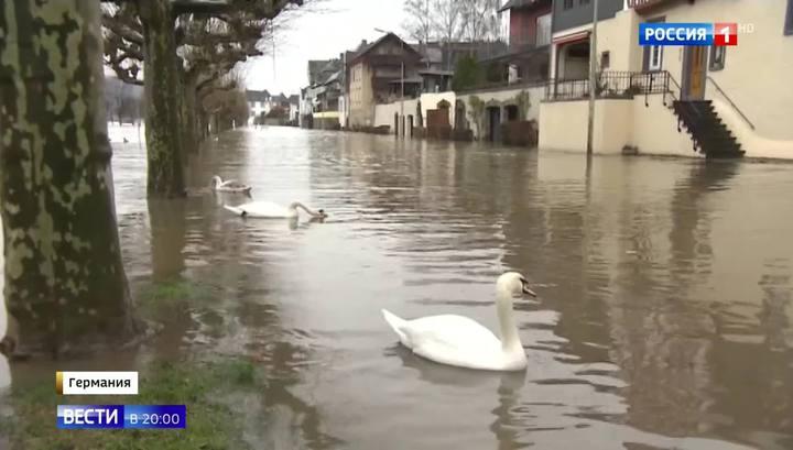 Десятки пострадавших, упавшие краны и деревья: последствия зимнего шторма в Европе