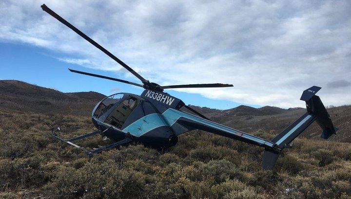 Олень сбил преследовавший его вертолет в США