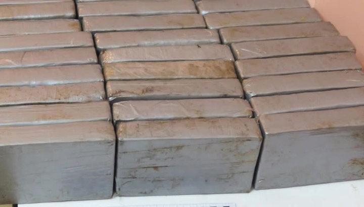 Правоохранители изъяли 16,5 тонны кокаина в порту Филадельфии в США
