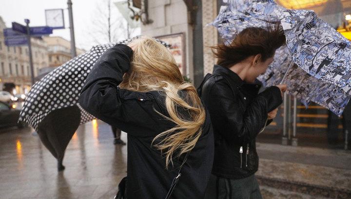 Шквал в Москве: валятся деревья, Парк Горького и зоопарк эвакуированы